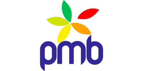 logo-pmb-services